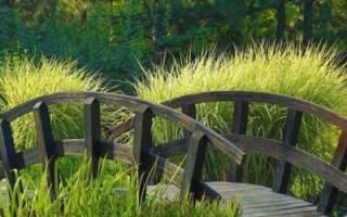 Садовый мостик своими руками: инструкция с фото, выбор формы и материалов