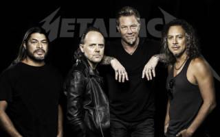 Песня группы Metallica спасла женщину от дикой пумы
