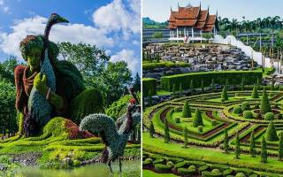 Тропический сад Нонг Нуч – один из самых больших и прекрасных ботанических садов мира
