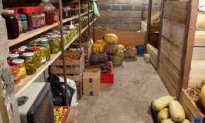 Овощехранилище своими руками: как правильно построить подземное и наземное хранилище