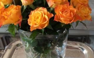Как сохранить свежесрезанные цветы