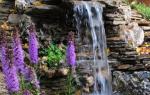 Пруд с водопадом своими руками на дачном участке: технология строительства и фото