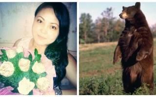 В Якутии сторож прогнала медведя криком